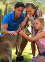 Gold Coast Tourist Attractions