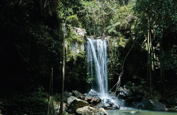 Waterfall in the Gold Coast Hinterland